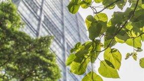 Tauw führt Umwelt-Due-Diligence für Steadfast Investment durch