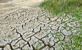 Die Position von TAUW zur EU-Bodenstrategie